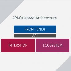 Schematic diagram of the API-oriented architecture with Intershop.